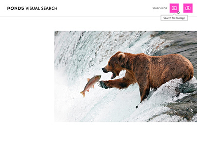 Visual Search Browser Extension