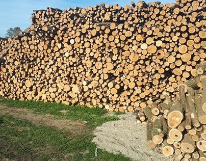 Drva Na Dzak