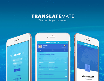 TranslateMate