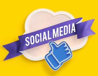 Social Media 2016