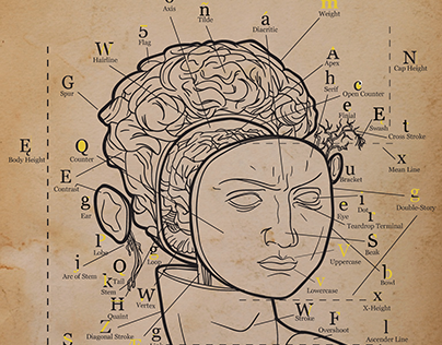 Imaginative Type Anatomy Mapping Poster