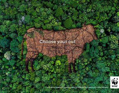 WWF Amazon Deforestation