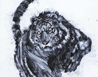 Tiger (2017, plexiglass)