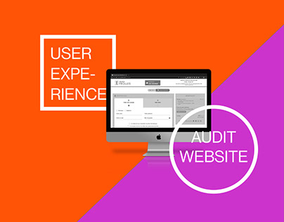 Audit user experience