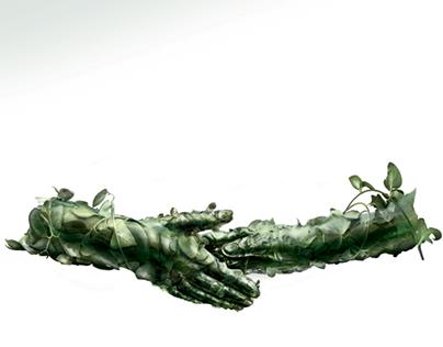 Organic Hands