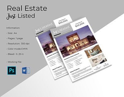 Real Estate Just Listed Flyer