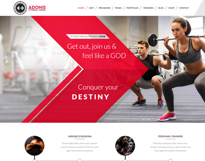 VEDA Fitness Demo