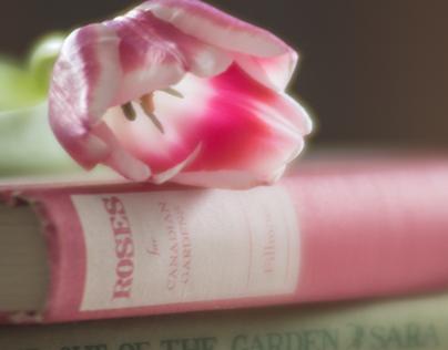Book & Flower study