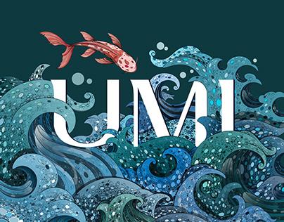 UMI illustrated typography.