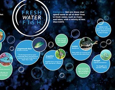 How Fish Breathe Underwater