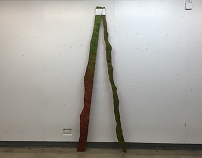 Untitled (stick paintings)