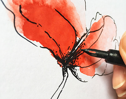 Illustration poppies