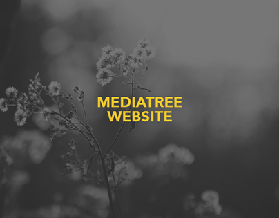mediatree website