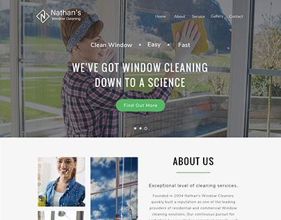 Window Cleaning Website