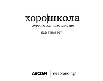 Architectural branding and EGD for a school in Russia