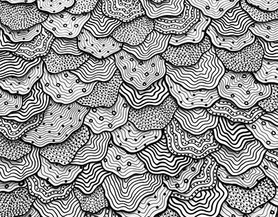 Mar, Terra — Collages