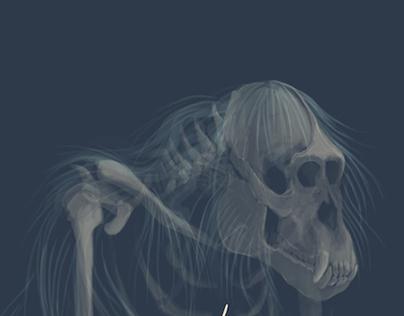 Ghost Orangutan