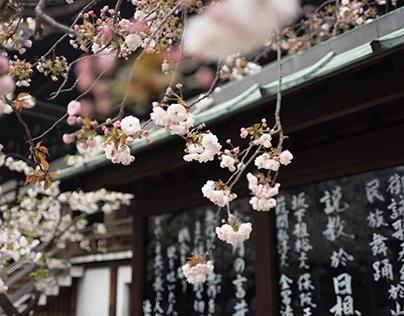 Tokyo's Best Restaurants