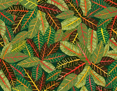 Pattern Portfolio