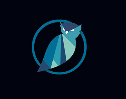 Blue Owl Risk Advisors Logo and Branding