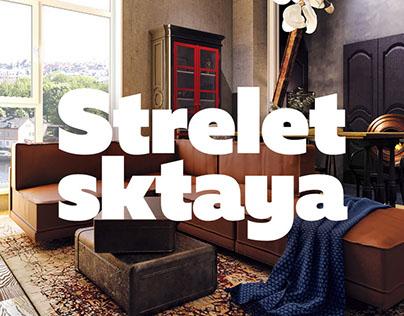 Streletskaya, 13   Visualisation for Artmonopoly