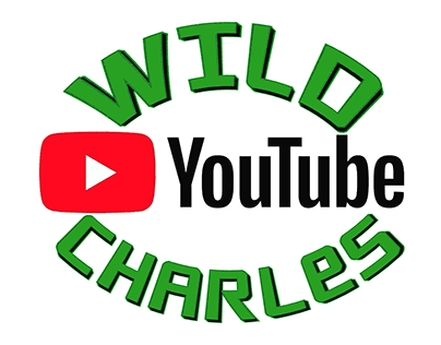 Logo for a international YouTube channel