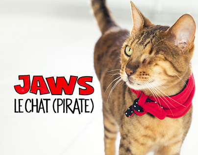 Jaws le chat (pirate) Illustrations et Produits
