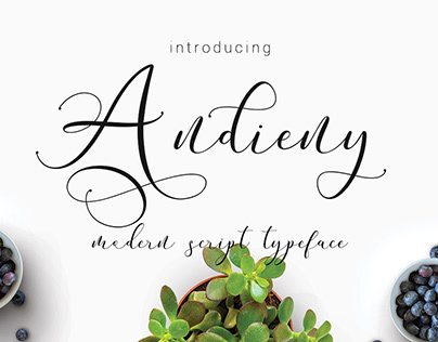 Andieny Script - Free Font