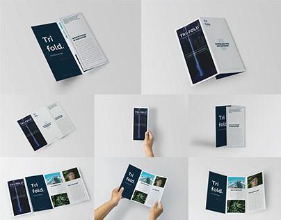 Trifold Brochure Mock-Up Set   FREE Download