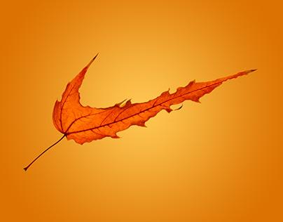 Nike Autumn collection advert