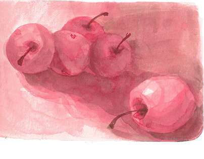 Apples Ink Drawing