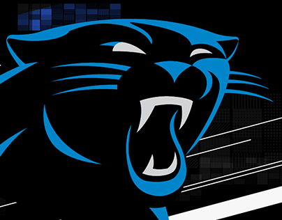2018 Panther Video Boards