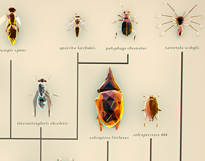 Taxonomy of the glitch