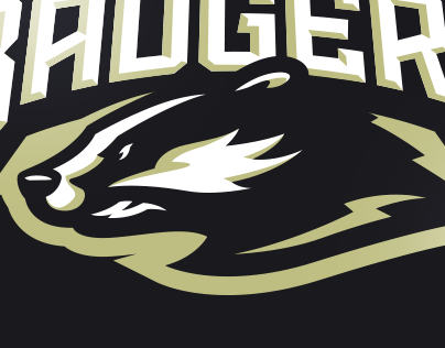 Badgers Sports Logo for Sale