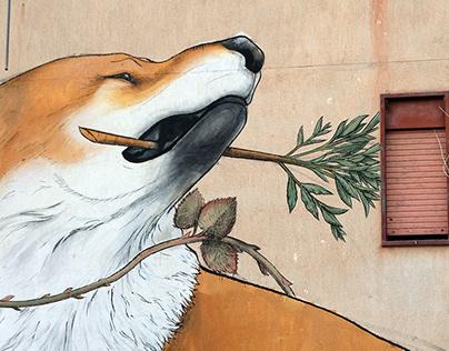 Fox . Systema naturæ