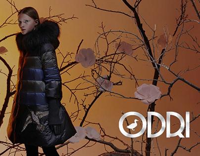 Ecommerce разработка интернет магазина для бренда ODRI