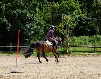 Pony games de St Gervais la Forêt