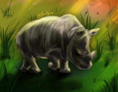 Illustration ; The Sumatran Rhinoceros