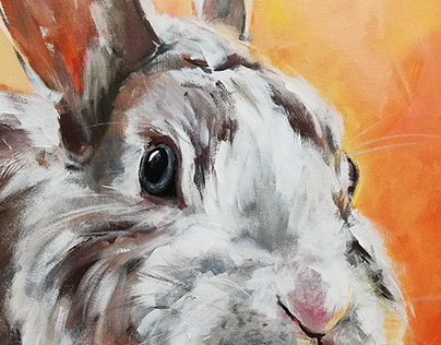 Rabbit portrait - Orange lights mood