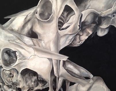 Bones and Dimensions IV