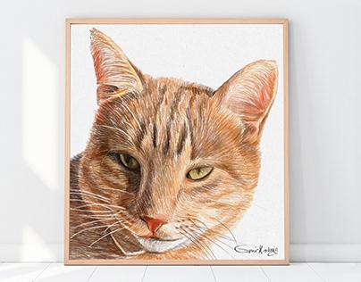 Cat portraits | Custom cat portraits