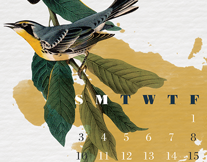 Audubon Calendar Series