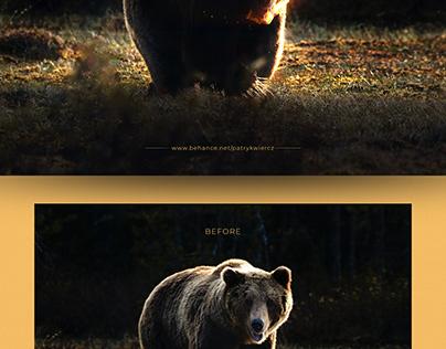 Burning bear