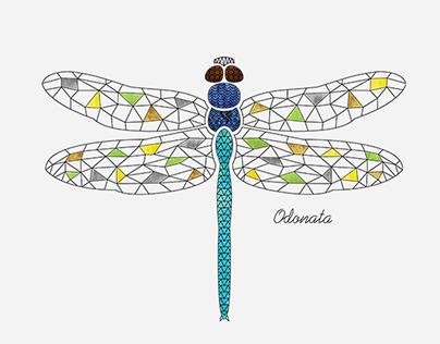Vector Illustration - Mandala Insects