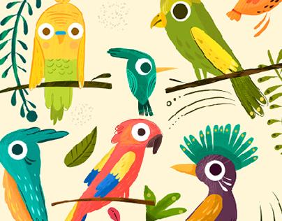 Aves de color
