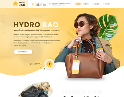 Bag Website Design