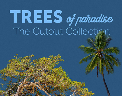 Cutout Trees of Paradise