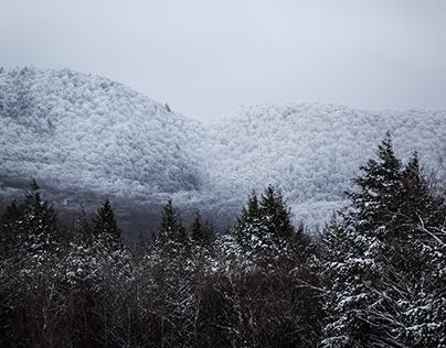 Un hiver sans hiver
