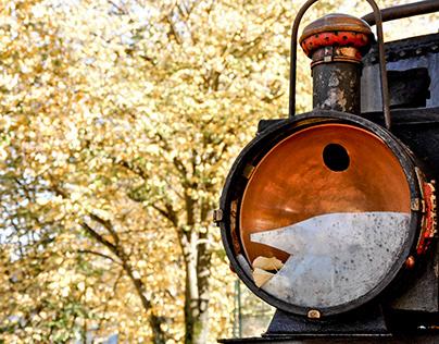 Old Train Vila Real