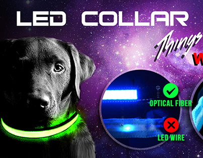 LED Dog Collar Video Review